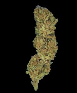 Black Jack Hemp Flower