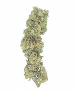 CBG Hemp Flower